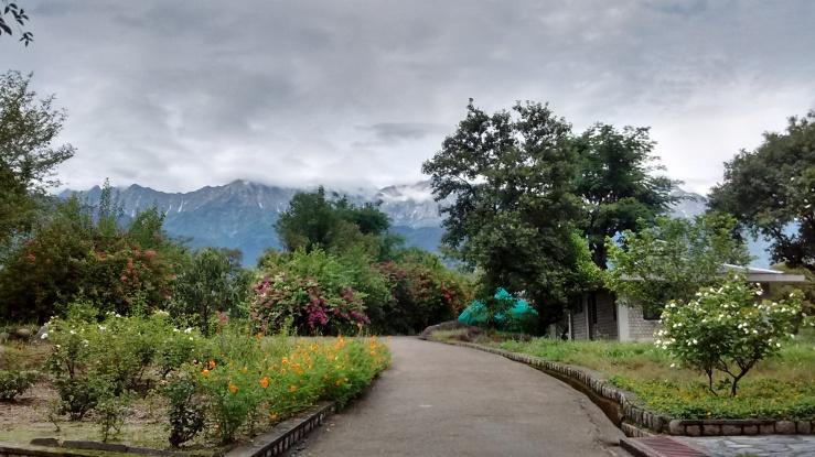 Dhauladhar Range Dharamshala
