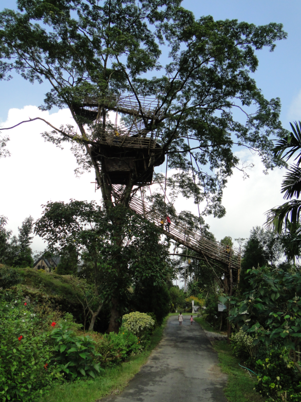 Mawlynnong-East-Khasi-Hills-District-Meghalaya